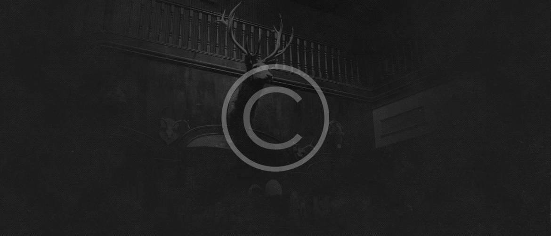 dark_animal.jpg